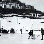 Cricket in the Alps