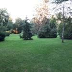 Der Basler Kannenfeldpark