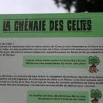 The Holy Oaks of La Tène