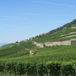 Monuments in Lavaux
