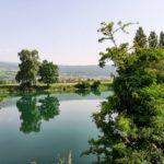 Le Landeron et son site naturel